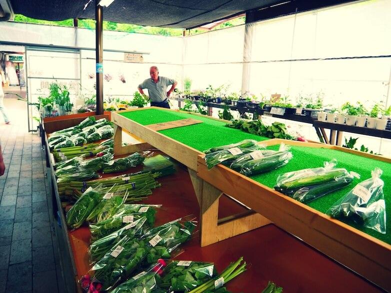 近くの道の駅(明治の森・黒磯)では、 アスパラガス・トマト・かぶ・ズッキーニ等々 色とりどりの旬なお野菜がたくさんあって。