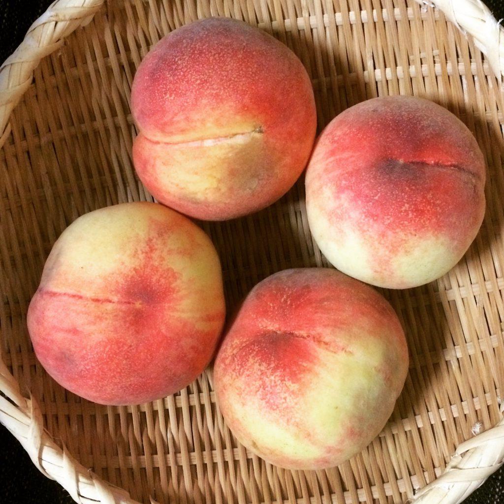 いつもは自分で買うけれど、この桃、いつもお世話になっている方が「沢山貰ったから」とお裾分けしてくださいました。部屋に置いているだけで甘い匂いがぷ〜んと漂う、幸せな匂いが充満。大ぶりで甘くて夏の疲れによく効く、大切なエネルギー源。