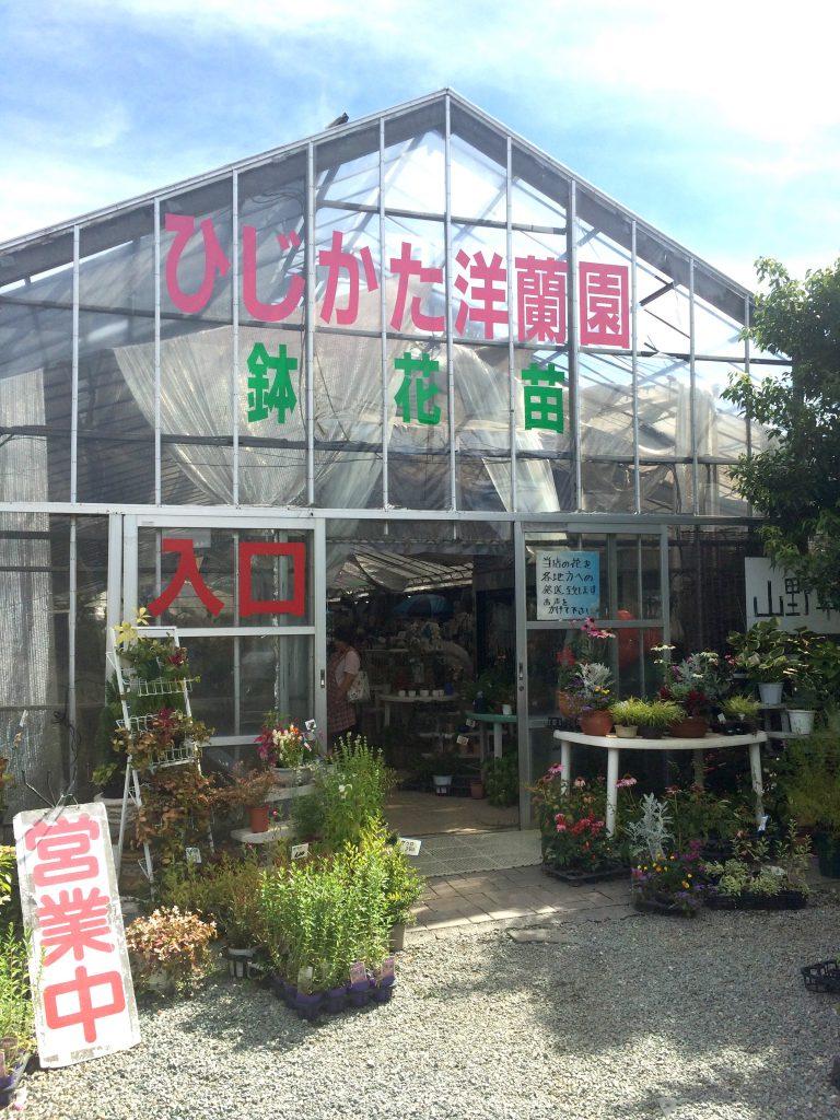 カフェの奥にはいろいろな植物や花の苗が販売されています。