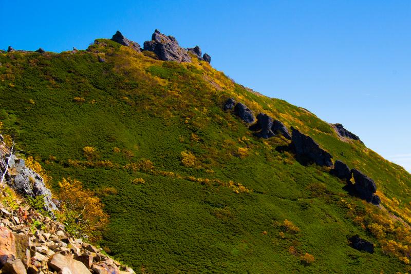 写真上部の岩山が権現岳の山頂。背ビレのように並ぶ岩がかっこいい